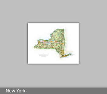 Image Portrait of New York