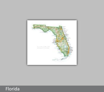 Image Florida Portrait