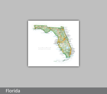 Image Portrait of Florida