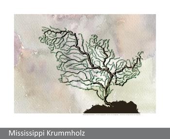 Image Mississippi Krummholz