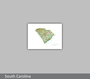 Image South Carolina Portrait